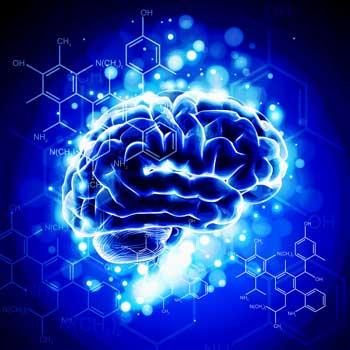 brain-chemicals.jpg
