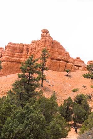 Heading-into-Bryce-Canyon.jpg