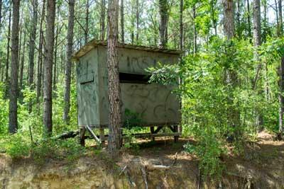 Louisiana-Box.jpg