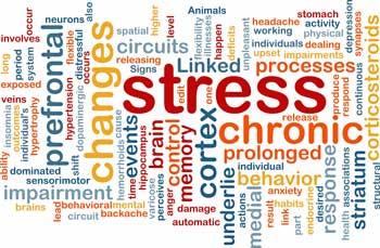 mental-stress.jpg
