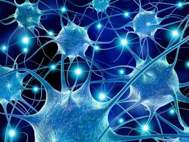 Neurons-III.jpg