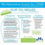 Mast Cell Diseases