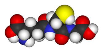 RIch Von Konynenburg proposed glutathione depletion plays a key role in chronic fatigue syndrome