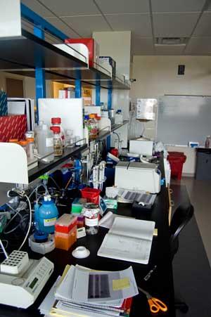 WPI-Lab-3-University-Nevada