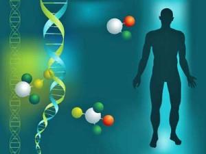 OMI-MERIT-Genome