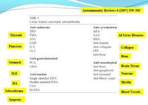 Antibodies and autoimmunity