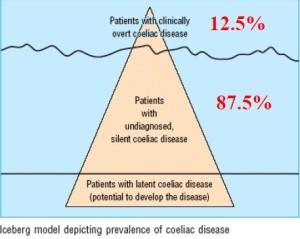 Pyramid BMJ