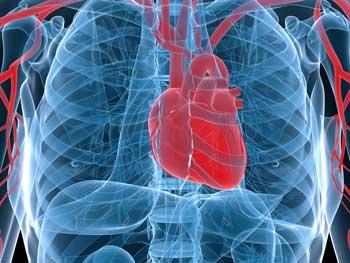 chronic epstein barr heart problems