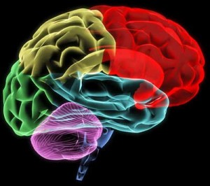 We are going to learn a lot about the brain from ME/CFS