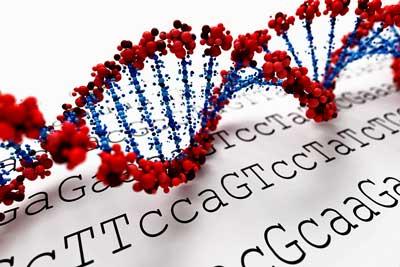 DNA-gattaca