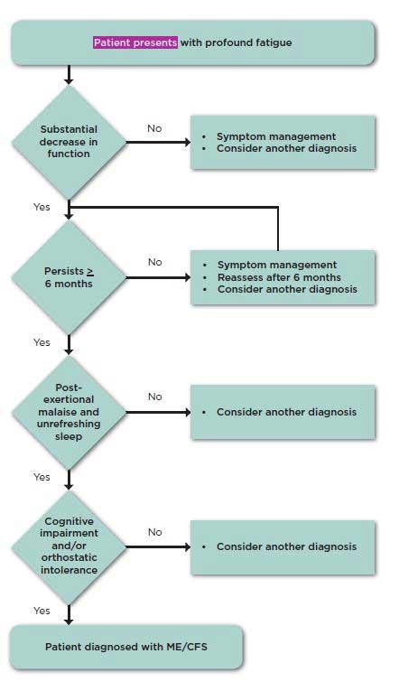 diagnostic algorhythm chronic fatigue