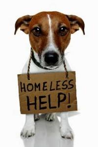 ME/CFS - homeless at the NIH