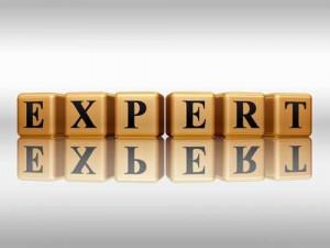 CDC me/cfs experts study