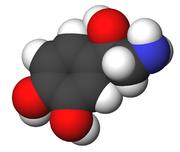 Norepinephrine- fibromyalgia
