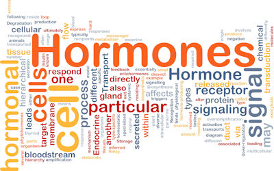 Sex (Hormones) and Fibromyalgia: The Pain Connection