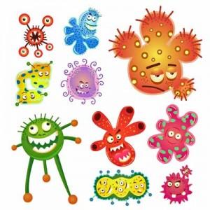 _bacteria-and-virus-car