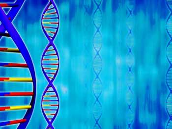 gene polymorphisms me-cfs