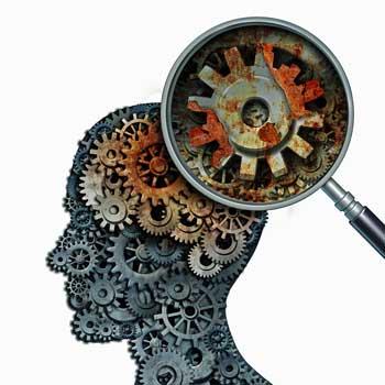gears brain