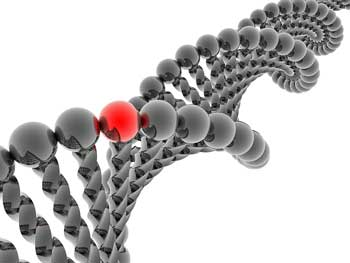 Genes May Be Causing Neuroinflammation and Pain in Fibromyalgia