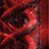 Genes, Mitochondria, Autoimmunity and Chronic Fatigue Syndrome: The Alan Light Talk