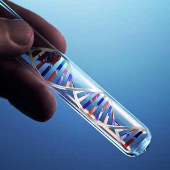 genes chronic fatigue