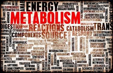 Metabolomics Study Points Finger at Energy Production in Fibromyalgia