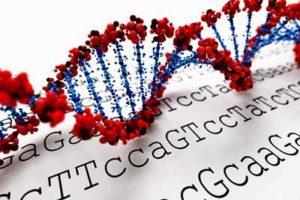 Worthey genes ME/CFS