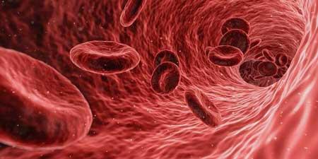 oxygen uptake muscle cells ME/CFS