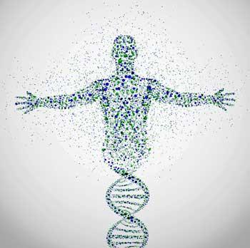 Epigenetics genetics fibromyalgia