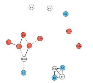 cytokine networks
