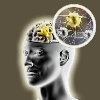 Amygdala Retraining Program Improves Symptoms and Biology in Fibromyalgia